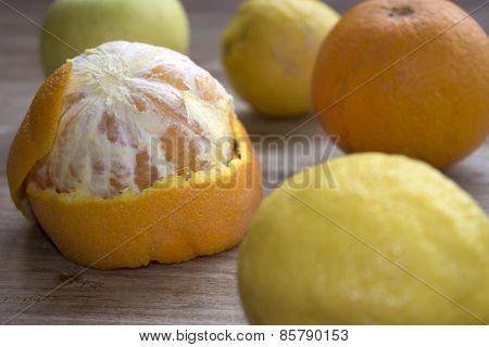 Citrus Of Calabria