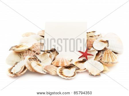 White card and seashells pile