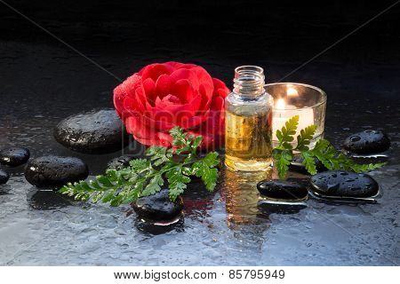 camellia oil , black stones , fern and candle
