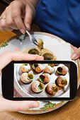 foto of escargot  - photographing food concept  - JPG