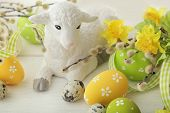 image of spring lambs  - colorful easter eggs and spring flowers - JPG