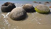 image of maori  - Moeraki Boulders are perfectly spherical rocks on the beach at Moeraki near Oamaru - JPG