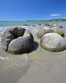stock photo of maori  - Moeraki Boulders are perfectly spherical rocks on the beach at Moeraki near Oamaru - JPG