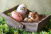 stock photo of bird egg  - easter composition with bird in a nest and easter eggs - JPG