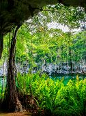 picture of cenote  - Cenote of Santo Domingo in Dominican Republic - JPG