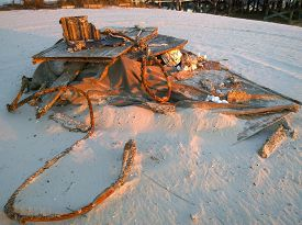 stock photo of katrina  - Debris from Hurricane Katrina on the white sand beaches of the Gulf Shore - JPG