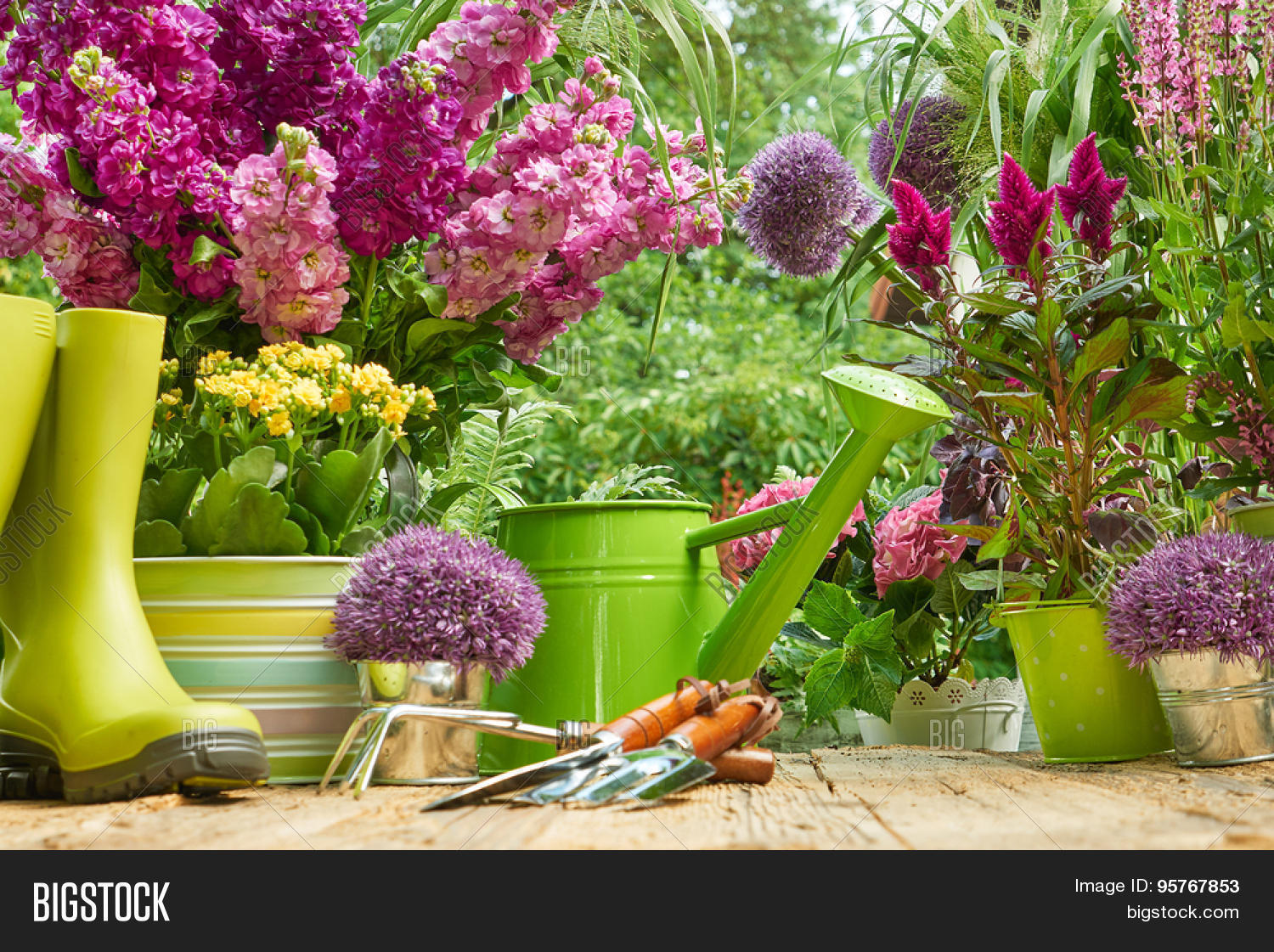 Gardening tools planting flower image photo bigstock for Gardening tools used in planting