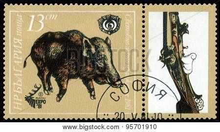 Vintage  Postage Stamp. Boar..