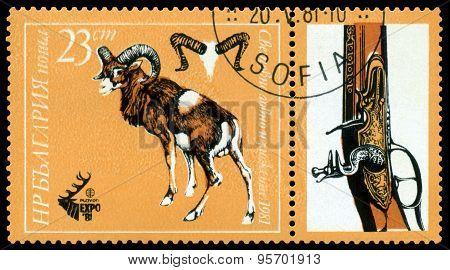 Vintage  Postage Stamp. Mouflon.