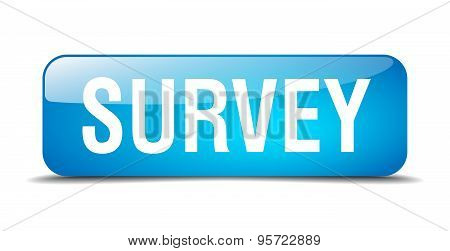Survey Blue Square 3D Realistic Isolated Web Button