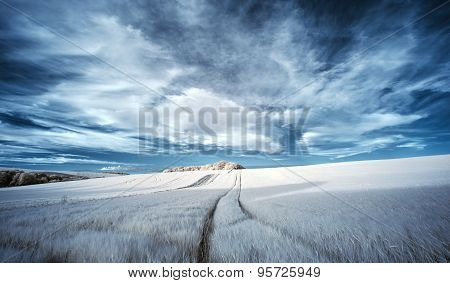 Stunning Surreal False Color Infrared Summer Landscape Over Agricultural Fields