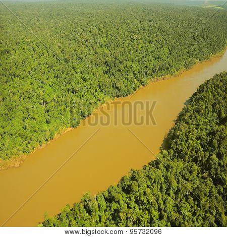 Flight Above The Jungle By Iguazu River.