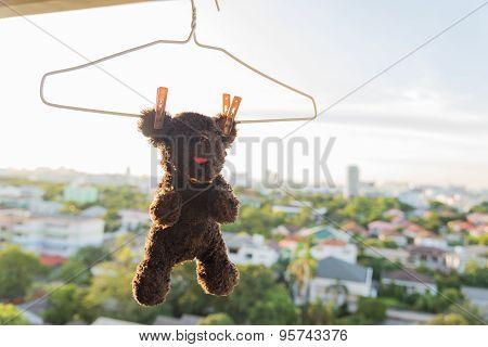 Hanging Animal Dolls