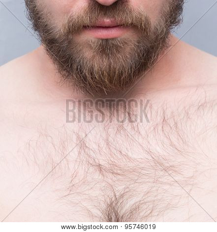Close-up of man's beard