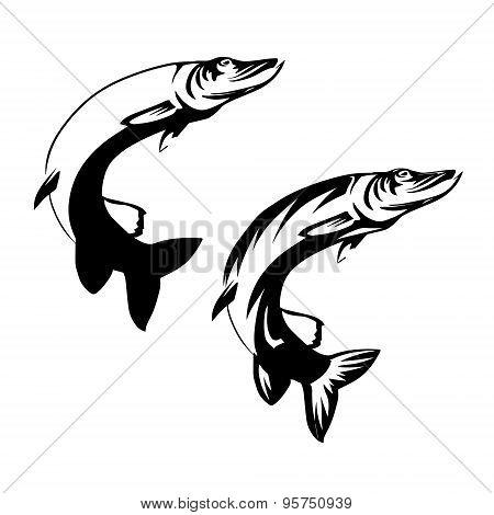 Vector Fish2
