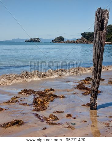 Beach In Australia..