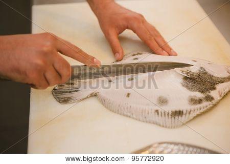 Flounder raw fish