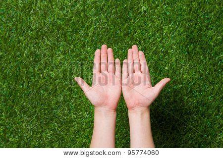 Empty human hands