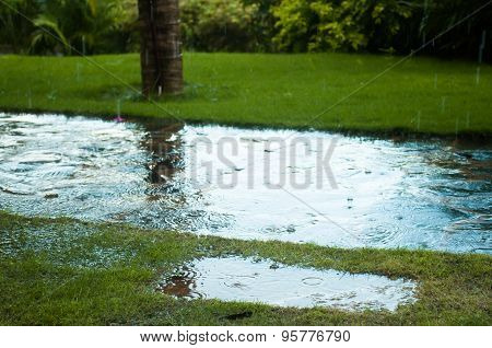 Raindrop On Road
