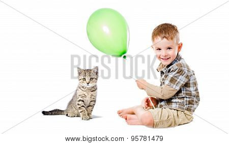 Cheerful boy and  kitten Scottish Straight