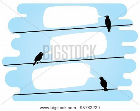 chatting birds on wires