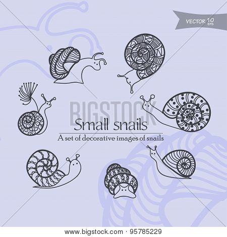 small snails