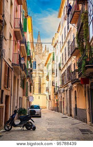 The Street Of Palma De Mallorca