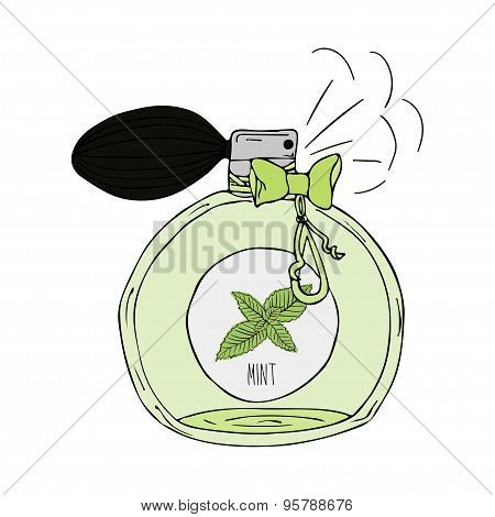 Hand Drawn  illustration of a perfume bottle with the scent of mint
