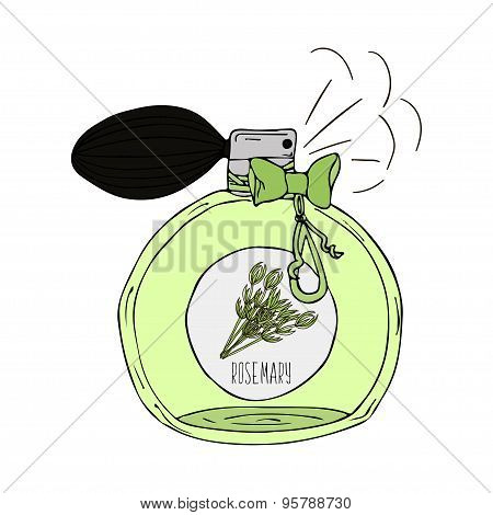 Hand Drawn  illustration of a perfume bottle with the scent of rosemary