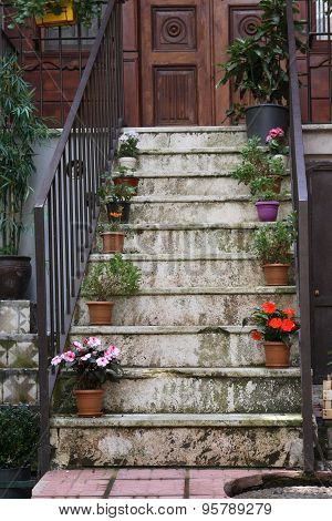 Flowers On Staircase