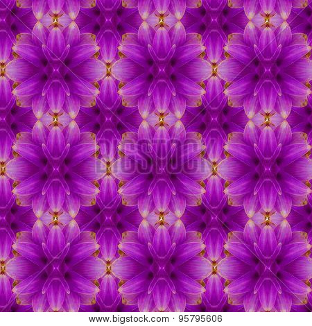 Siam tulip seamless pattern  background