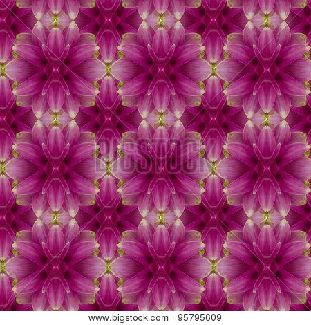 Siam tulip seamless pattern  background.