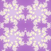 picture of mandelbrot  - Fractal floral pattern texture with purple background - JPG