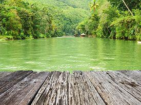 picture of rainforest  - Tropical River running through rainforest - JPG