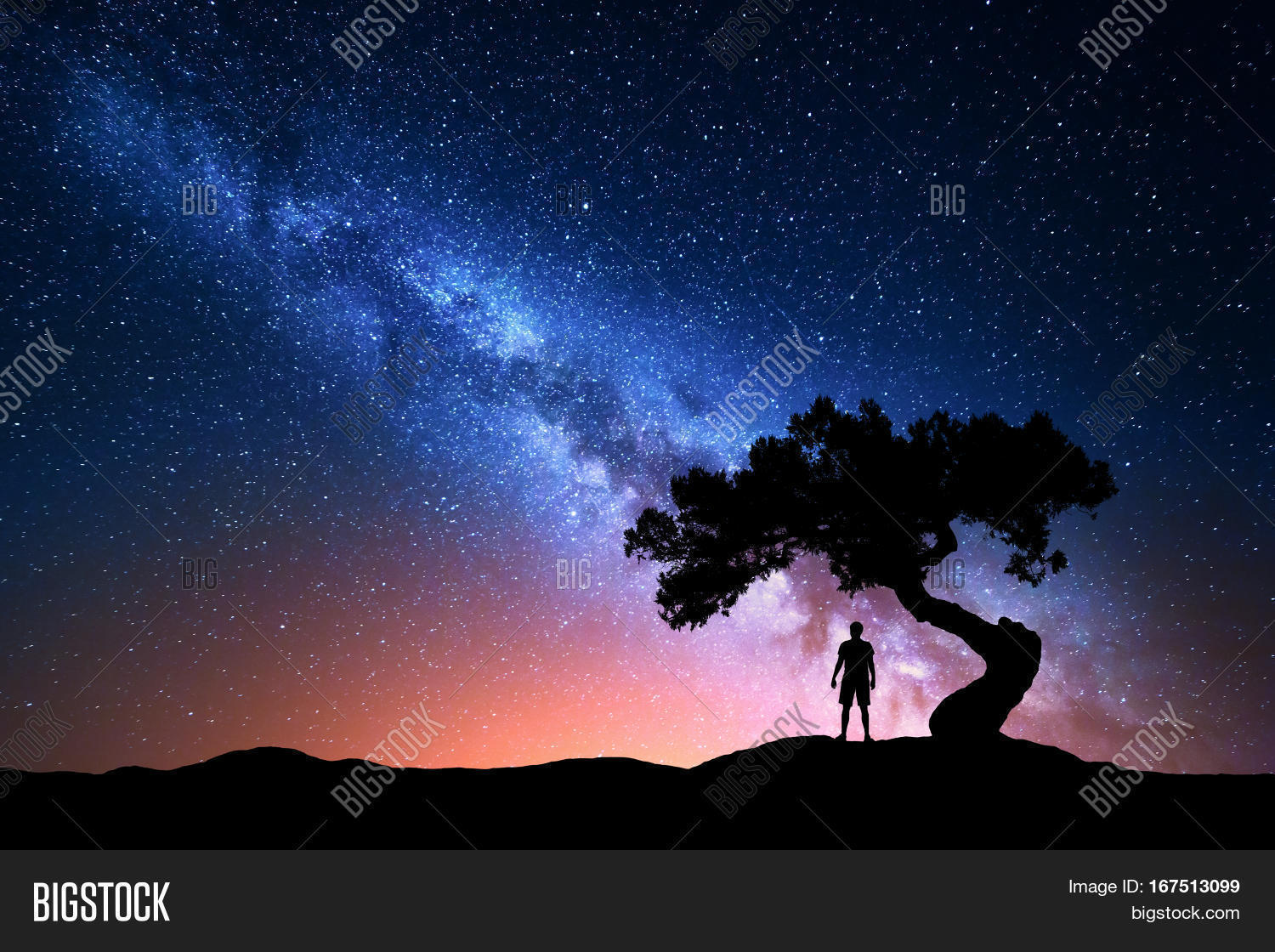Milky Way. Night Sky Stars Old Tree Image & Photo | Bigstock