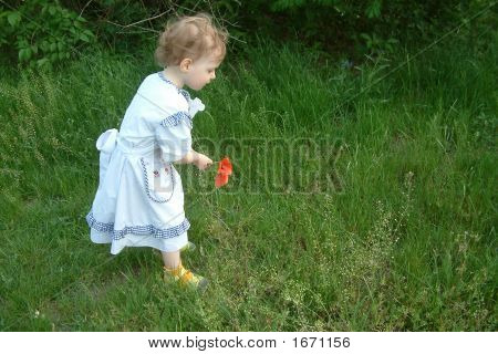 Baby And Poppies