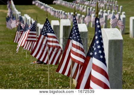 Flags And Graves