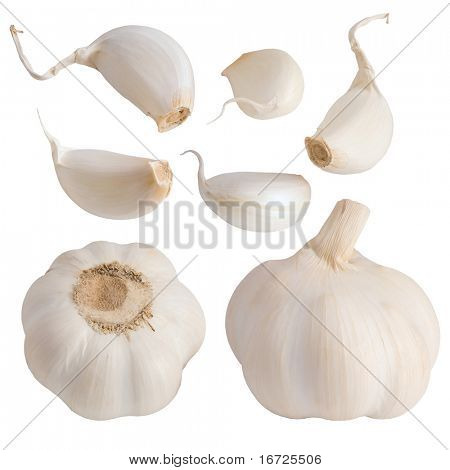 Garlic set on the white background (isolated).