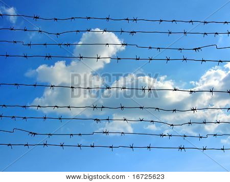 Barbed wire on the blue sky background.