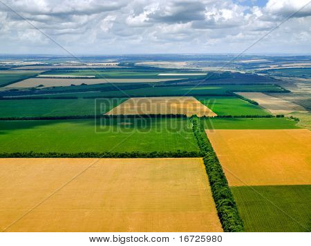 Fields from above.