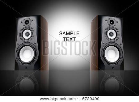 Black speakers on black background.