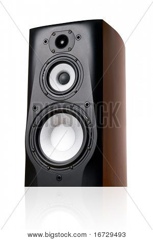 Speaker on white background (isolated).