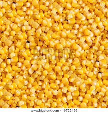Corn closeup seamless background.
