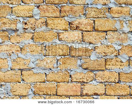 Shell rock wall texture pattern.