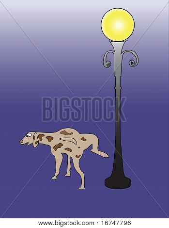 Dog Is Pissing On The Lamppost