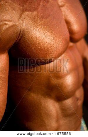 Body-Builder'S Body