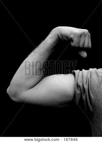 Bicep In Black And White