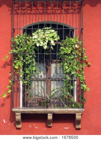 Colorful Window