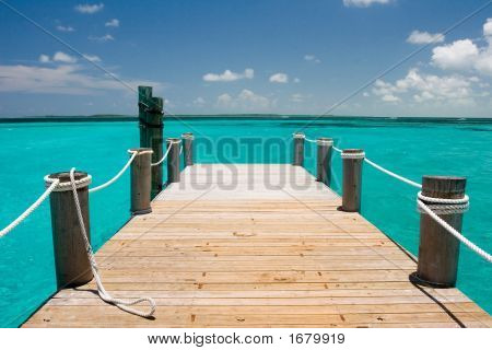 Tropical Dock