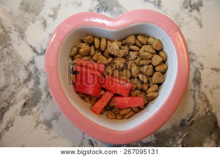 poster of Dog food with watermelon and green beans. Fresh Dog Dinner with fruit and veggies. Healthy dog food.